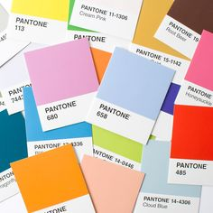 Pantone Assorted Note Cards