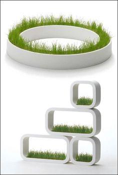 Modern Indoor Grass Planter