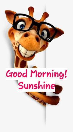 Cute Good Morning Quotes, Scooby Doo, Fictional Characters, Fantasy Characters