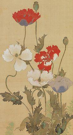 Suzuki Kiitsu Poppies century - still life quick heart Japanese Illustration, Watercolor Illustration, Japanese Painting, Chinese Painting, Sculpture Textile, Plant Art, Japan Art, Famous Artists, Ancient Art