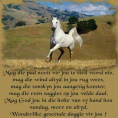 Afrikaans Good Morning Wishes, Good Morning Quotes, Birthday Qoutes, Birthday Wishes, Birthday Greetings, Uplifting Quotes, Inspirational Quotes, Lekker Dag, Afrikaanse Quotes