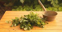 Semillas de cilantro para bajar de peso. ¡Atenta a estos tips!  #dieta #adelgazar #perderpeso