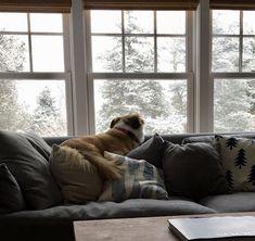 Neighborhood Watch, Bean Bag Chair, Couch, Furniture, Home Decor, Settee, Decoration Home, Sofa, Room Decor