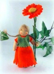 Ringelblume (Calendula) Blumenkind für den Jahreszeitentisch im Sommer