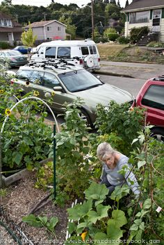 "Diana Vergis Vinh says there's advantages to planting out front on the ""sidewalk strip."" That's the strip of ground between the sidewalk and the street. Backyard Farming, Urban Farming, Roots, Diana, Sidewalk, Gardens, Plants, Inspiration, Biblical Inspiration"