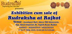 Rudralife - Exhibition Cum Sale of Rudraksha #Rajkot #Gujarat