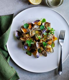 Recipe for gnocchi with spicy pipi sauce and wild herbs by Monty Kulodrovic from…