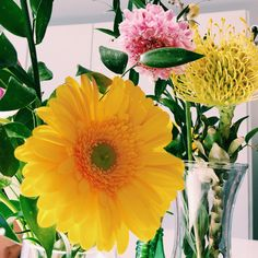multibrand fashion store miss-m antwerp kapellen shopping Paul Joe, Liu Jo, Antwerp, Missoni, Camilla, Store, Flowers, Plants, Shopping