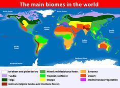 Biomes are parts of the earth that share similar climates, vegetation, and…