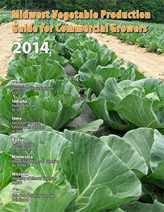 ID-56 Midwest Vegetable Production Guide for Commercial Growers cover page image
