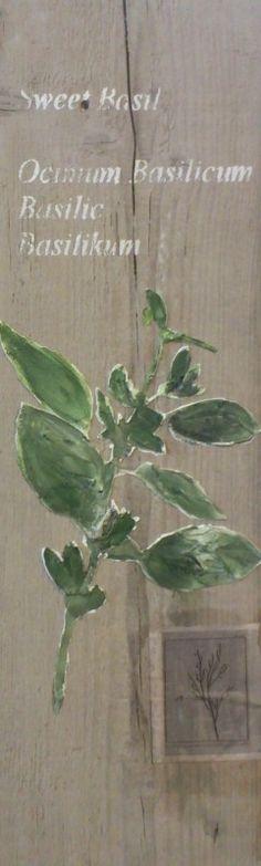 Wanddecoratie Voor Keuken : tak zoete basilicum. Deze leuke wanddecoratie voor in de keuken