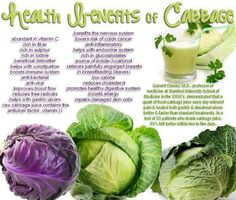 "Health Benefits of Cabbage : As a nutritional powerhouse, "" cabbage is very rich in anti-oxidant vitamins and a compound called indole-3-carbinol, which is said to both inhibit and cleanse carcinogens, thus making cabbage a potent detoxification food. ""  It is also quite low in calories, yet high in dietary fiber; it is also a healthy […]"