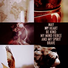 Gryffindor + Thunderbird aesthetic