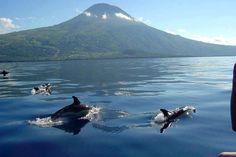 Ponta Delgada em Azores