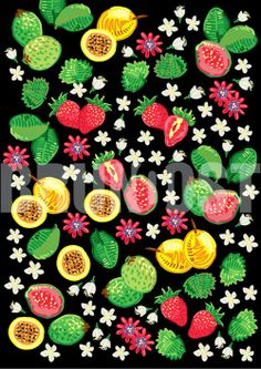 BRUNO OST | digital art | Flowers and Fruits over black canvas #digitalart #art # illustration #drawing #brunoost