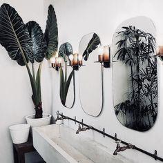 pinterest || instagram || macselective