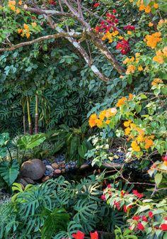O muro alto desta casa nos Jardins, em São Paulo, esconde uma surpresa: dois terrenos unificados ganharam paisagismo assinado pelo expert Gilberto Elkis. O lugar se tornou um cenário incrível para festas ao ar livre