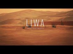 Google utiliza un camello para grabar el desierto de Liwa - http://dominiomundial.com/google-utiliza-un-camello-para-grabar-el-desierto-de-liwa/?utm_source=PN&utm_medium=Pinterest+dominiomundial&utm_campaign=SNAP%2BGoogle+utiliza+un+camello+para+grabar+el+desierto+de+Liwa