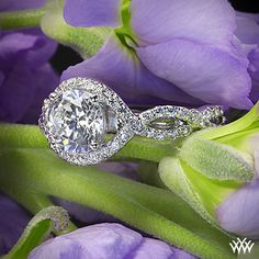 Verragio Twisted Bypass Diamond Engagement Ring from the Verragio Insignia Collection.