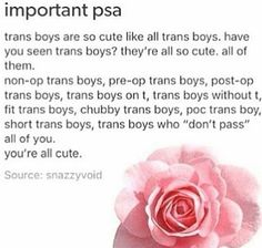 I'd so date a Trans boy or girl as long as they are ok with the fact that I'm Ace (that's my main problem with dating..)