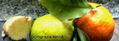 """viaggi e ricette: CRODINO : LE MIE RICETTE PER """" L'ANALCOLICO BIONDO..."""
