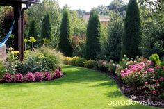 Forum ogrodnicze - Ogrodowisko - Another! Outdoor Landscaping, Front Yard Landscaping, Outdoor Gardens, Boxwood Garden, Garden Planters, Beautiful Flowers Garden, Beautiful Gardens, Sloped Backyard, Garden Landscape Design