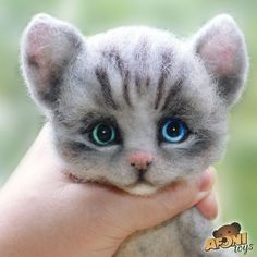 Cute Needle felted project wool animals cat(Via @afonitoys)