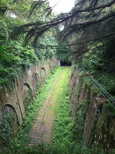Beautiful old metro rail reclaimed by nature. Paris Parc Montsourie
