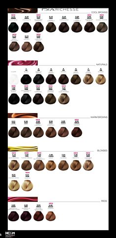 loral professionnel dia richesse color chart - Coloration Diacolor