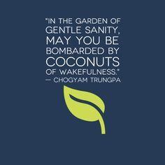 Chögyam Trungpa Rinpoche ..*