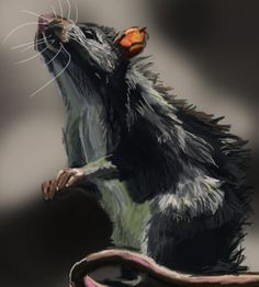 Rat Speed Painting by Inari123