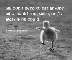 We don't need to eat anyone who would run swim or Fly Away if he could. - James Cromwell -