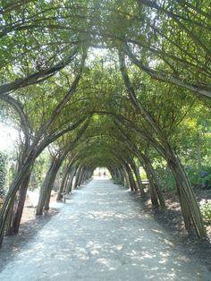 Terra Botanica - Angers - Les avis sur Terra Botanica - TripAdvisor
