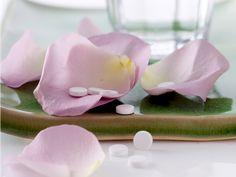 Jedes der von Dr. Wilhelm Schüßler definiertes Salz entfaltet an andere Stelle seine Spezialkräfte und regt spezielle Prozesse an. Wir erklären euch die jeweilige Wirkung der 12 Schüssler Salze. Weight Loss Program, Japanese, Ethnic Recipes, Blog, Salts, Low Carb, Japanese Language, Blogging, Salt
