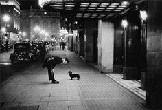 Comissário de hotel brinca com um cão pequeno em Piccadilly Circus, Londres – 1938