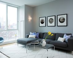charcoal sofa is so pretty with the soft gray walls like we have.  it's a neutral canvas but with some intensity