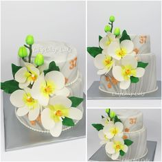 Orchidee Flower Cake (from fb: Hannover ChipChap Cake) Facebook, Mini, Cake, Flowers, Pie, Kuchen, Cakes, Royal Icing Flowers, Torte