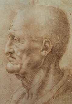 Study of an Old Man's Profile by Leonardo da Vinci #art