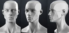 planes of the face - Google Search