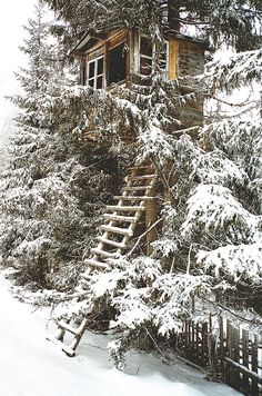 tree house in the snow...That ladder would be tricky but I'm sure there's a roaring fire, a good book and some wine awaiting us.