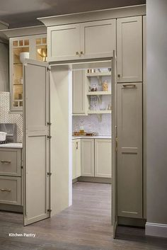 Is a walk-in pantry at the top of your kitchen renovation wish list? The pantry … Is a walk-in pantry at the top of your kitchen remodel wish list? The Pantry Walk Through Cabinet allows you to maintain design cohesion with full-height cabinet doors that Kitchen Pantry Design, Kitchen Cabinet Organization, Diy Kitchen Cabinets, New Kitchen, Kitchen Ideas, Pantry Ideas, Kitchen Remodeling, Organization Ideas, Kitchen Inspiration
