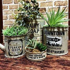 女性で、3DKの、Bedroom/フェイクグリーン/リメ缶/NO GREEN NO LIFEについてのインテリア実例。 「 リメ缶にGreen...」 (2016-07-08 15:49:30に共有されました) Succulent Gifts, Succulent Terrarium, Galvanized Decor, Plant Projects, Diy Cans, Tin Can Crafts, Small Gardens, Garden Styles, Planting Succulents