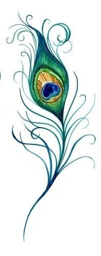 A beautiful drawing of a peacock feather! #tattoos #tattooideas