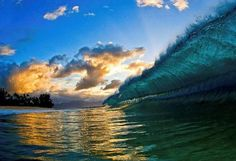 Shorebreak Photography By Clark Little (14 Pics + Clip) > Film-/ Fotokunst, Sports > California, Clark Little, hawaii, Napa, oahu, Shorebreak