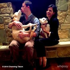 Pin for Later: Step Up and See Channing and Jenna's Most Magical Relationship Moments  The couple cuddled with their dogs in 2014.