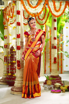 Brocade sari, which is what all the brides are wearing these days. If I don't wear royal blue like I want, I want one that's more simple so the gold doesn't look too gaudy.