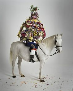 Tim Walker Photography, over a decade of Vogue and so much more than just fashion   http://timwalkerphotography.com/