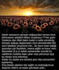 Muhammed Sav, Islamic Teachings, Allah Islam, Wtf Fun Facts, Hadith, Cool Words, Did You Know, Religion, Wisdom