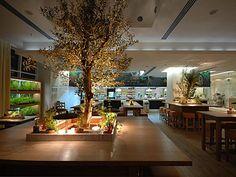 Luxury Nature Italian Fine Dining Restauran Interior design Rucola Furniture