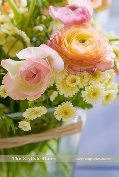 Ranunculus ❀ ♢♦ ♡ ❊ ** Have a Nice Day! ** ❊ ✿⊱╮❤✿❤ ♫ ♥ ღ☮k☮ღ ❤ ~☀ღ‿ ❀♥ ~ Tues 05th May 2015 ~ ❤♡༻ ☆༺ h❀ฬ to .•` ✿⊱╮ ♡